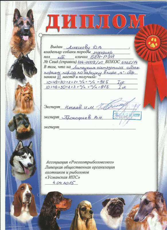 Состязанеия Барсук 2 пуска Усманская ИПС 2015