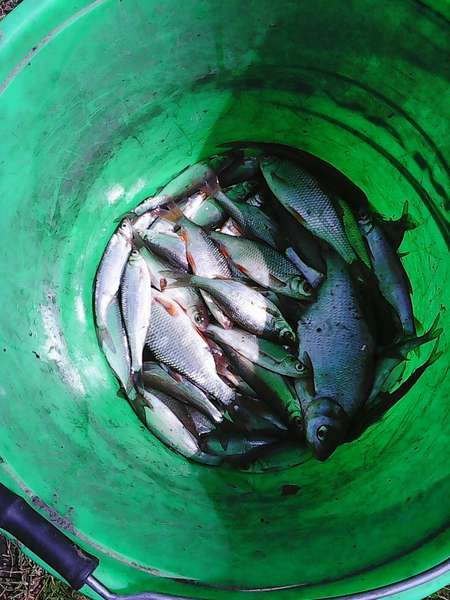 Весенняя рыбалка 2015