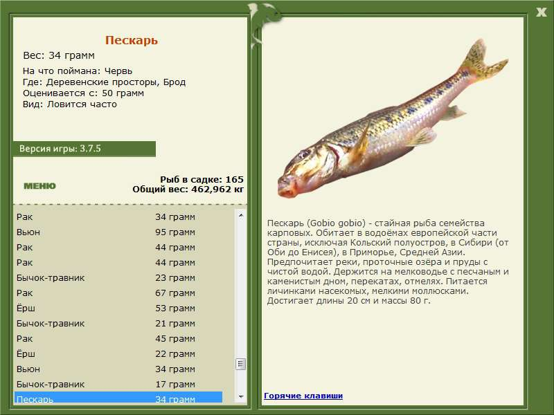 мобильная рыбалка где ловят пескарей