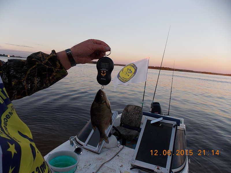 для рыбалки дмитров