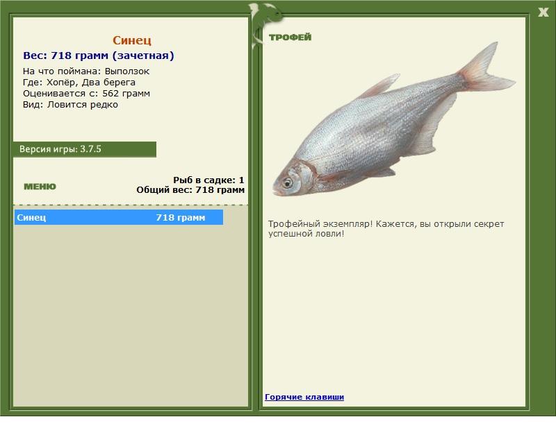 снеток рыба на что ловить