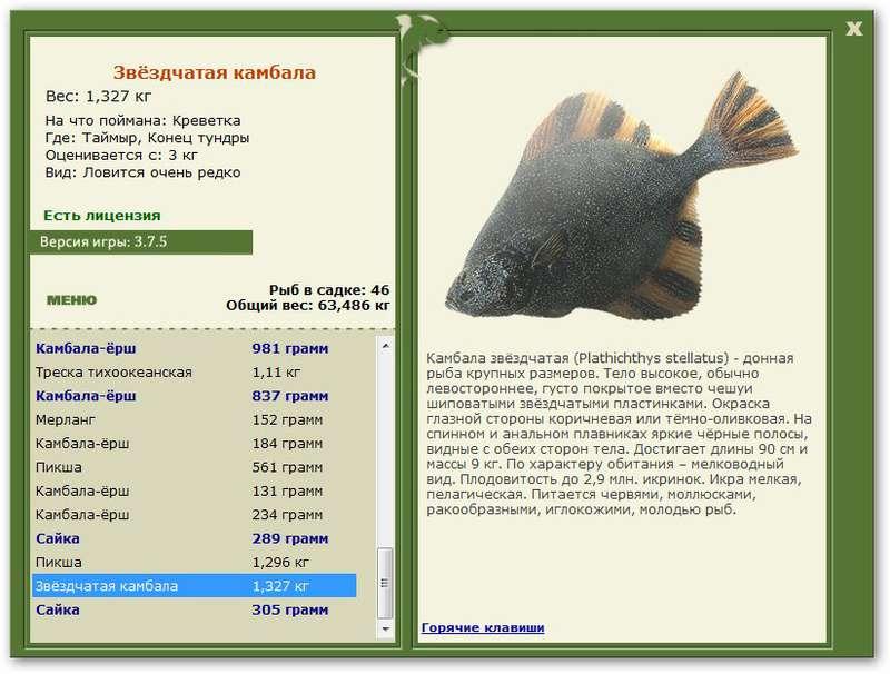 таймыр.базы.русская рыбалка