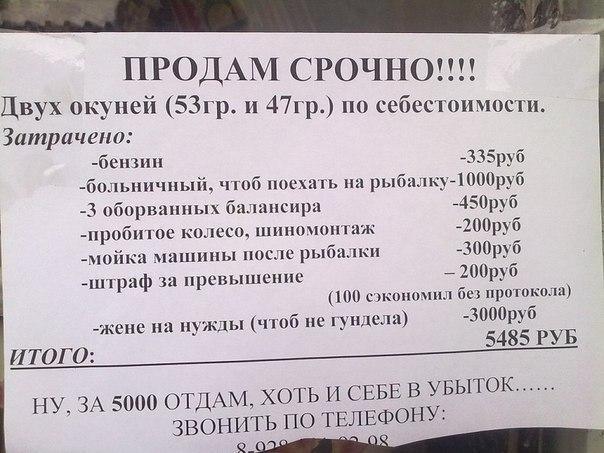 Картинки скачать бесплатно про рыбалку