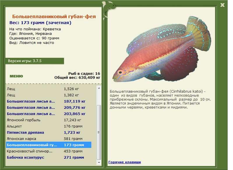 фея • Рыбы • РУССКАЯ РЫБАЛКА
