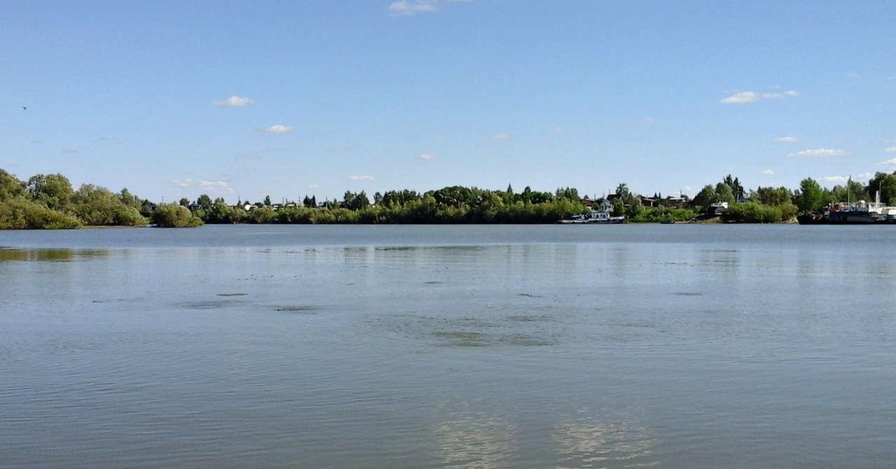 fion 55 форум рыбаков омской области