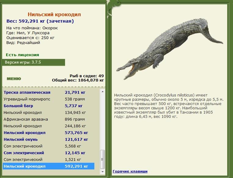 программа ловля крокодила