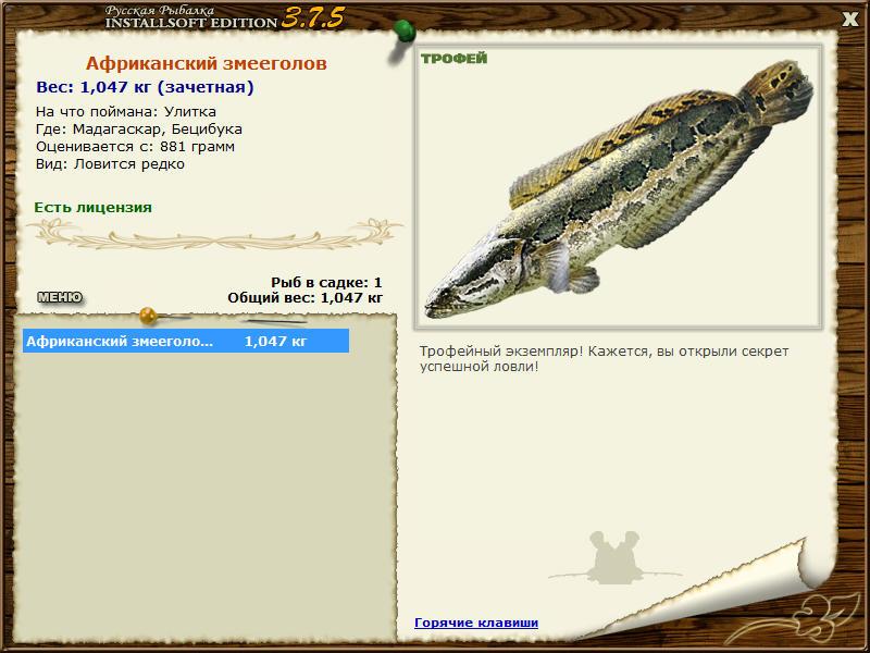 Африканский змееголов