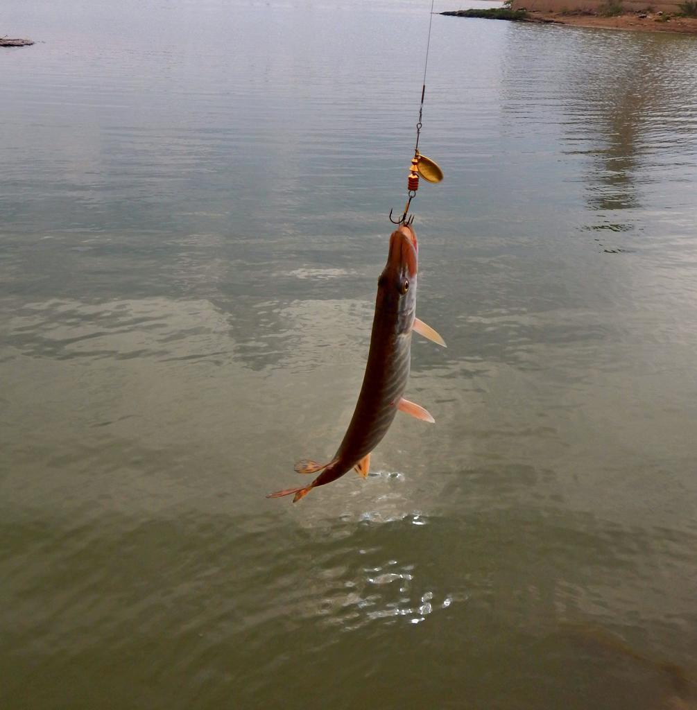 шубняк омск карта рыбалка