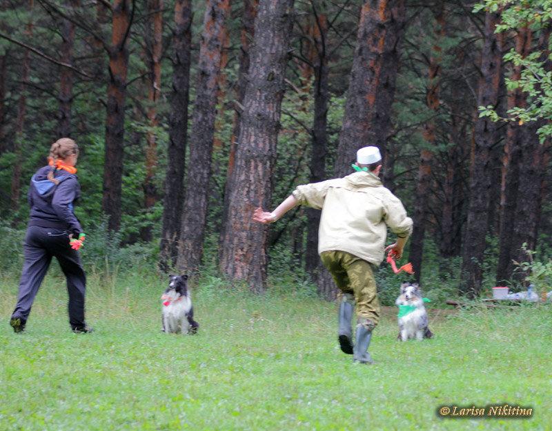 http://forumimage.ru/uploads/20150928/14434426893506466.jpg