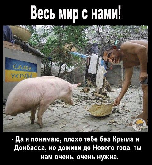 http://forumimage.ru/uploads/20150930/144360325561569977.jpg