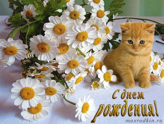 http://forumimage.ru/uploads/20151005/144402699552624833.jpg