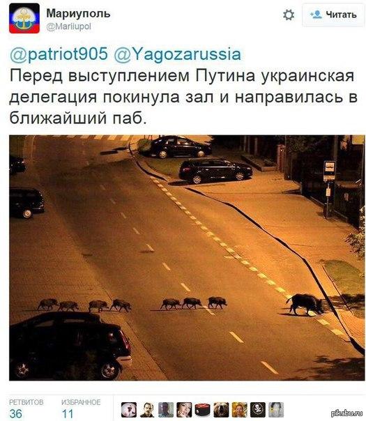 http://forumimage.ru/uploads/20151005/144403912746142747.jpg