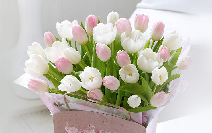 Нежные цветы с днем рождения картинки