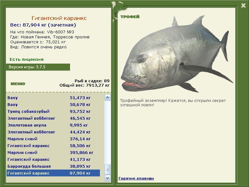 как поймать крупные экземпляры рыбы