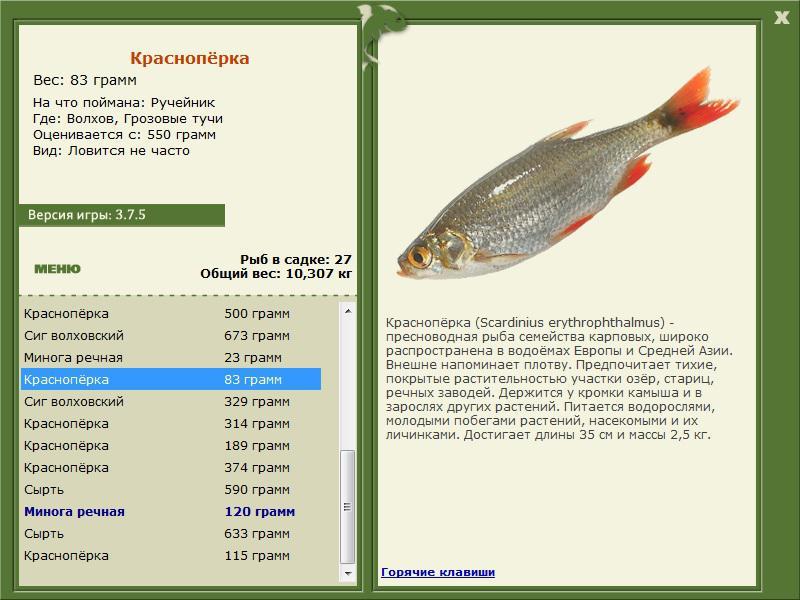 Русская Рыбалка 3.7 Для Андроид