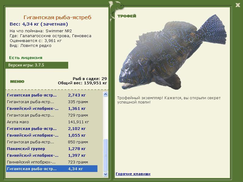 ястреб • Рыбы • РУССКАЯ РЫБАЛКА