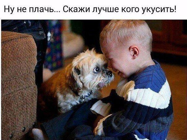 http://forumimage.ru/uploads/20151201/14489637292184187.jpg