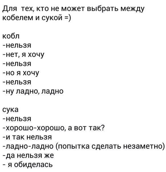 http://forumimage.ru/uploads/20151201/144898568247368667.jpg