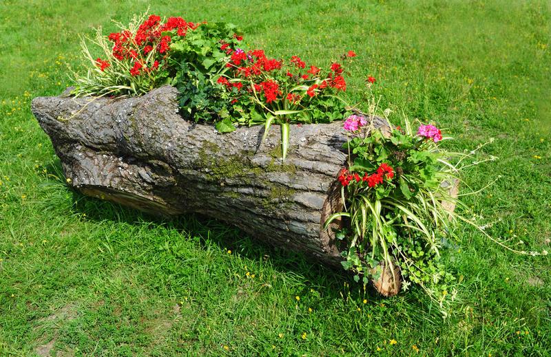 Цветочные клумбы своими руками из дерева