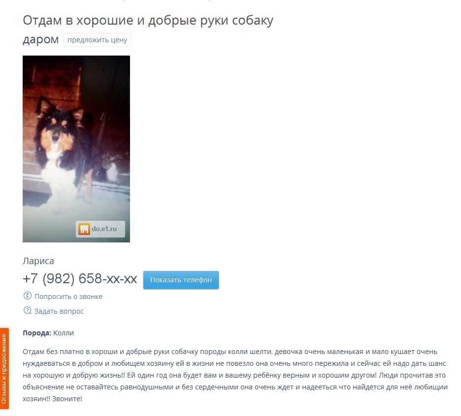 ФОРУМ ЛЮБИТЕЛЕЙ КОЛЛИ И ШЕЛТИ
