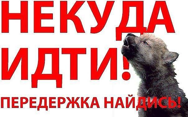http://forumimage.ru/uploads/20151222/145074248663377999.jpg