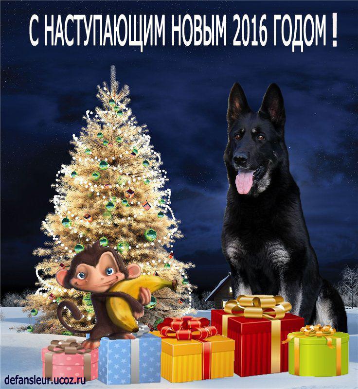 http://forumimage.ru/uploads/20151227/145125794452648946.jpg