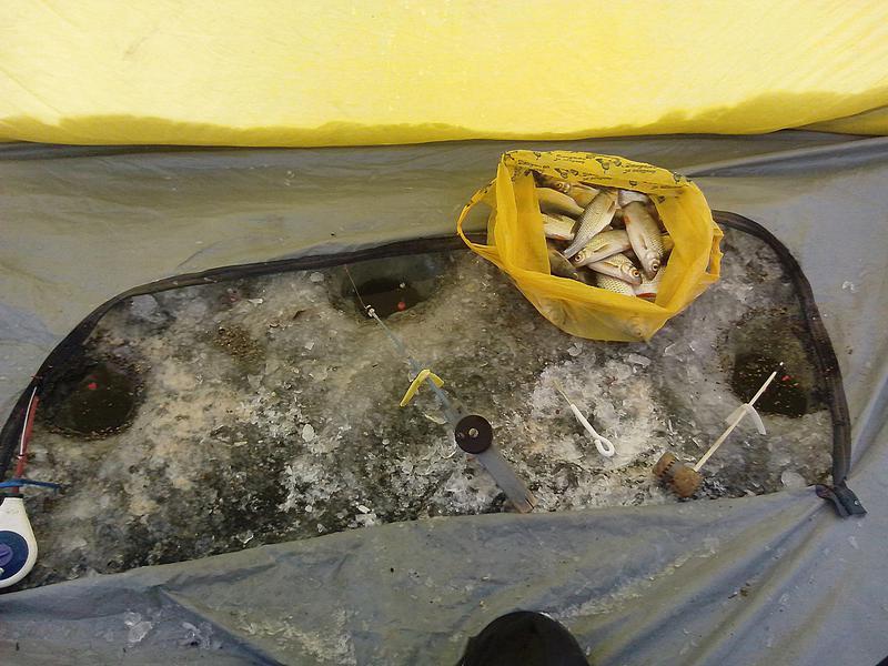 Рыбалка в Новой Боровой
