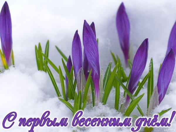 http://forumimage.ru/uploads/20160301/14568483639570611.jpg