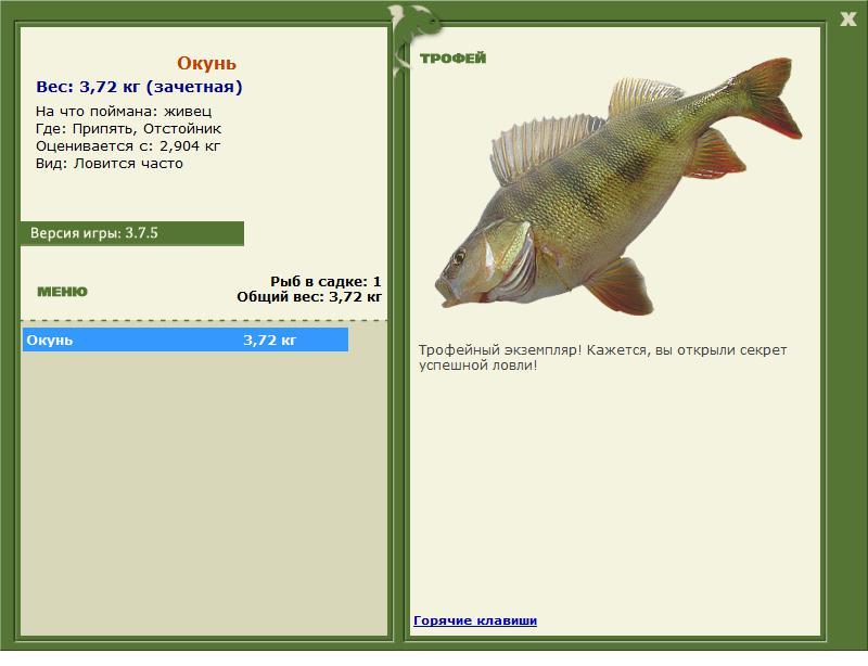 припять ротан рыбалка 3.6