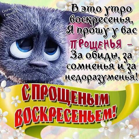 http://forumimage.ru/uploads/20160313/1457881654914710028.jpg