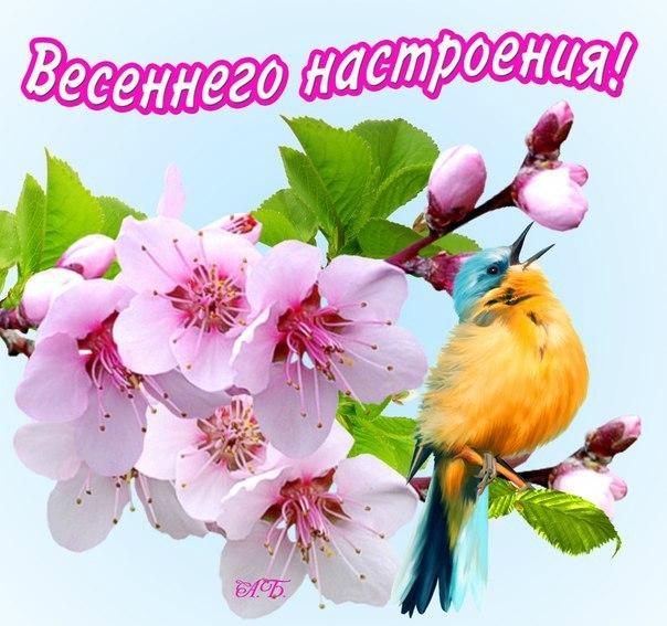 С весной вас поздравление