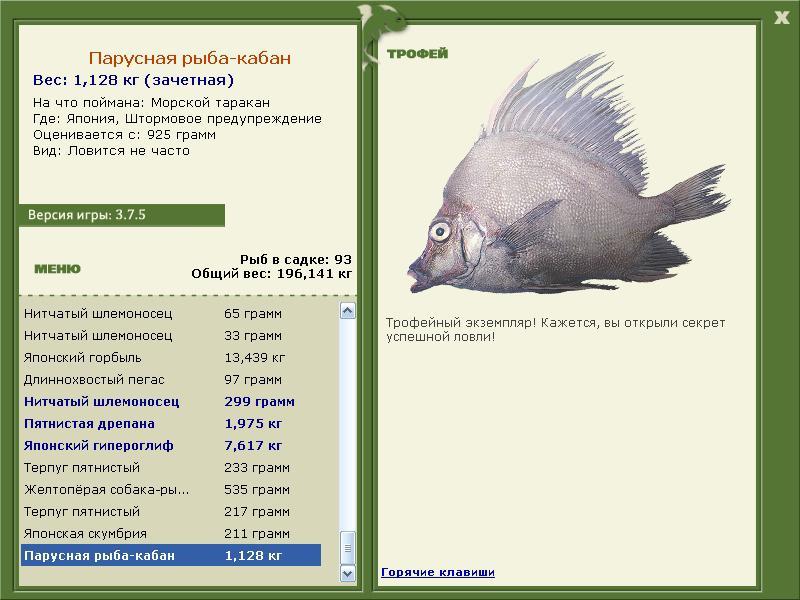кабан • Рыбы • РУССКАЯ РЫБАЛКА