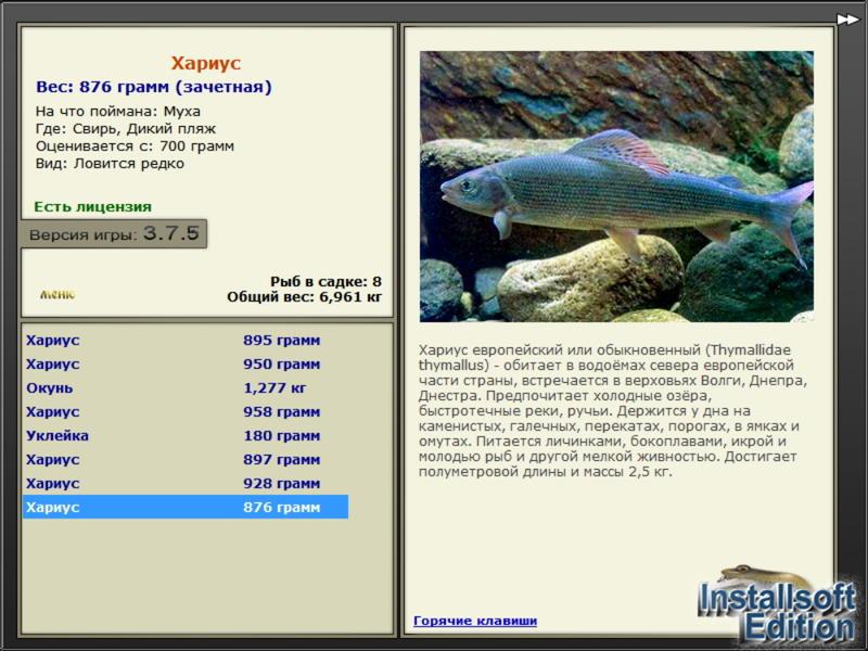 свирь клевалка рыбалка 3