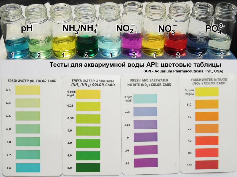 Как определять жесткость воды для аквариума в домашних условиях 741