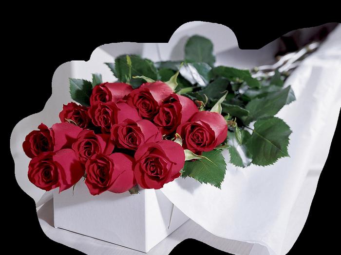 http://forumimage.ru/uploads/20160625/14668742072592823.png