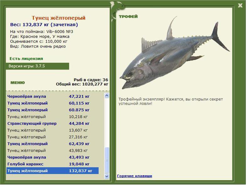 на что ловить рыбу на красном море