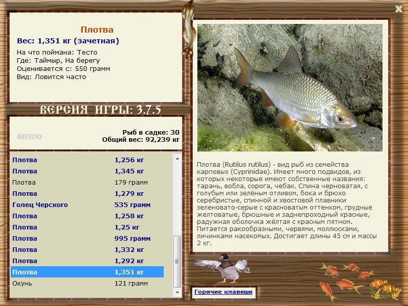 напишу статью по рыбалки