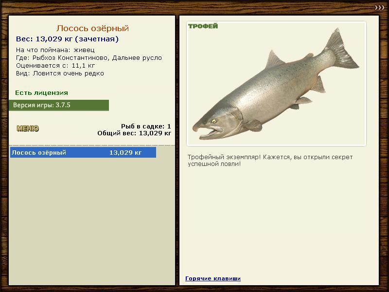 где ловить на рыбхозе форель