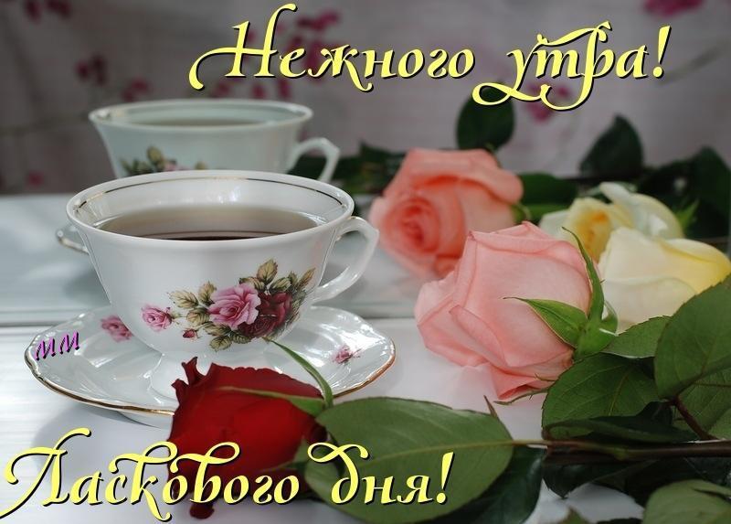 Доброе утро картинки mirpozitivaru