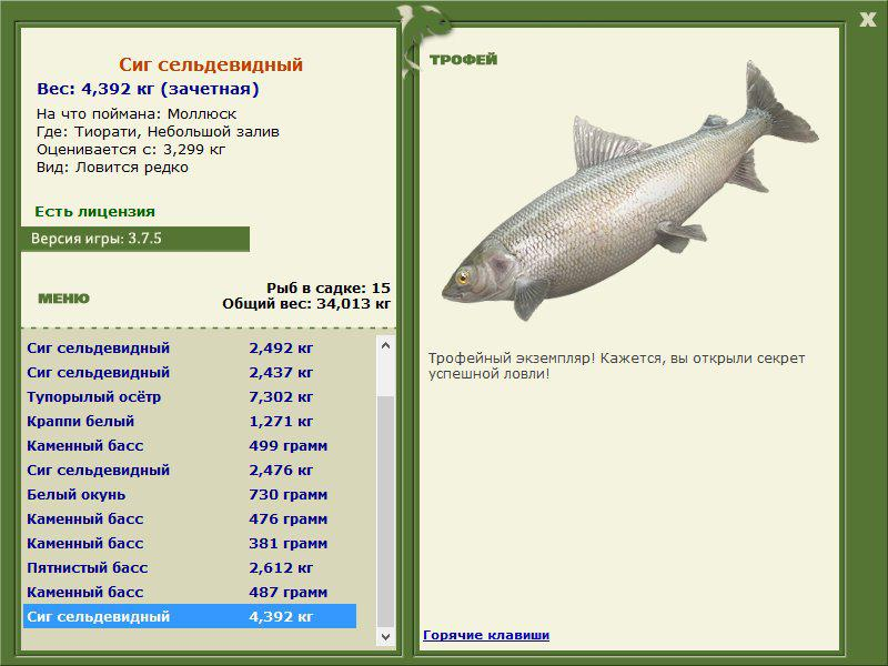 рыбалка на рыбу санфиш