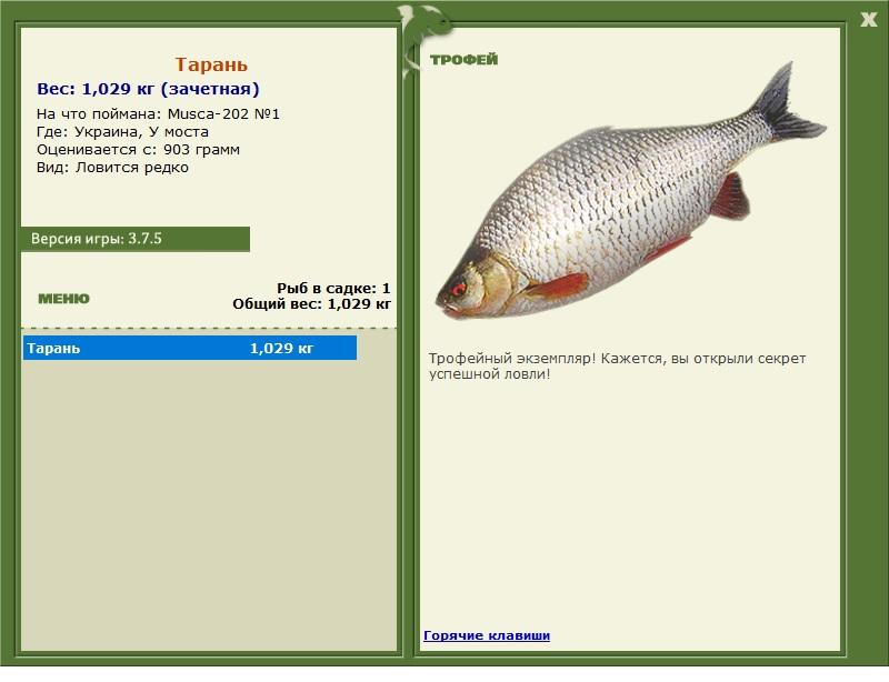 урал где клюет рыба