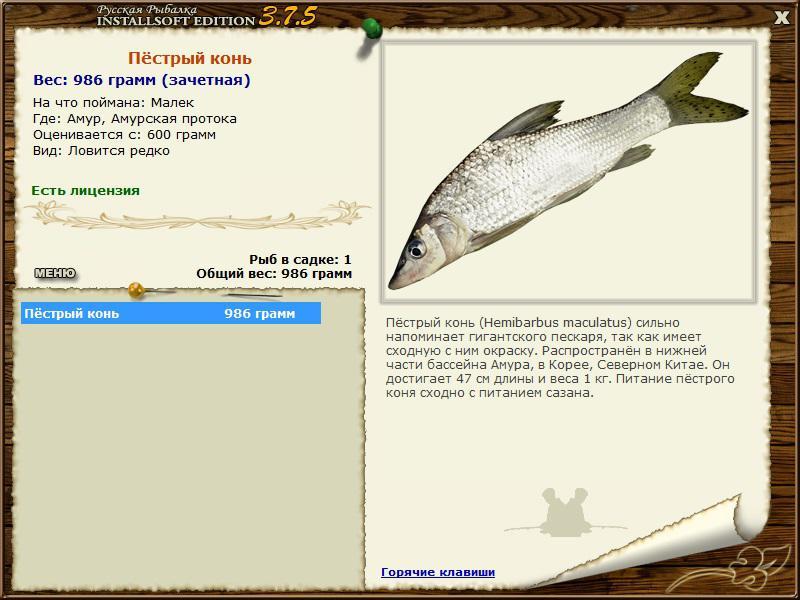 рыбалка на пестром