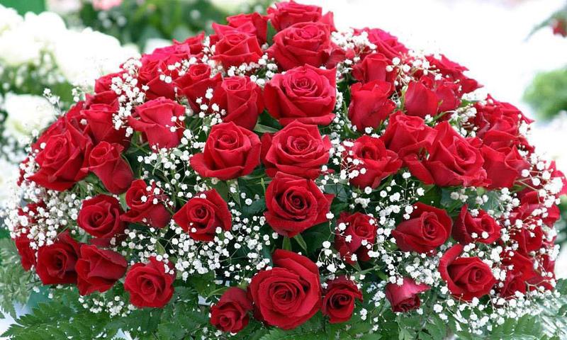 Красивые анимационные цветы на день рождения