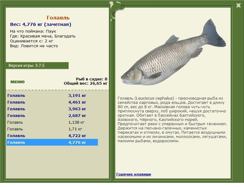 фантастическая рыбалка наживка