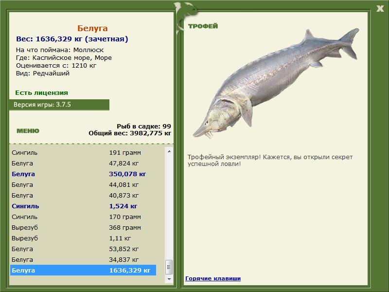 волжский гигант рыбалка 3