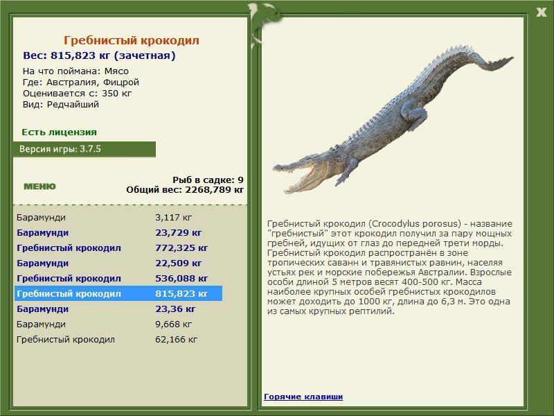 ловля гребнистого крокодила