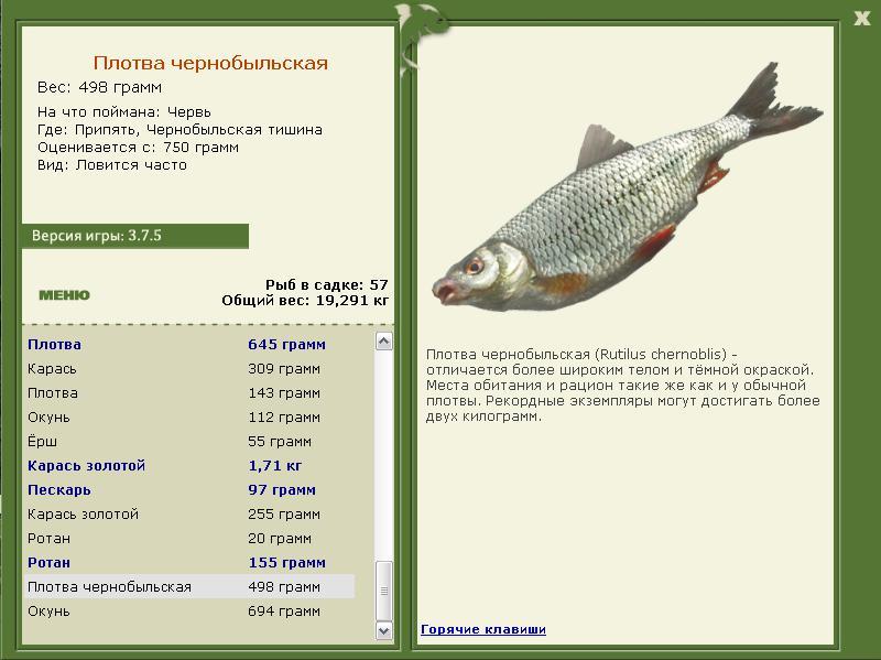 рыбалка в ульяновске в отстойнике