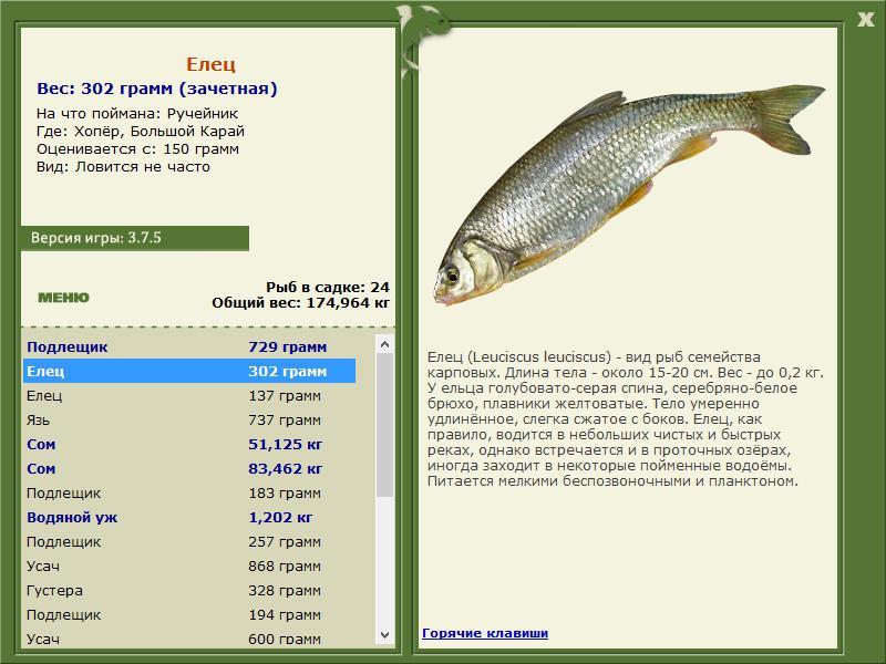 описание рыболова
