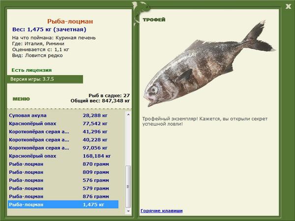 рыбалка 3.1 как продать всю рыбу