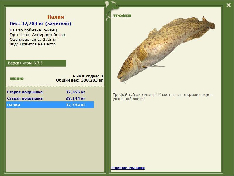 на что ловить налима рыбы
